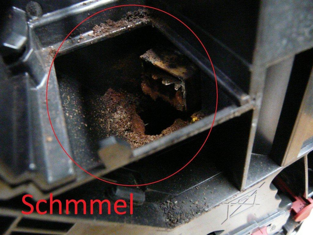 Bosch TES70151, geht aus, Schimmel (3)