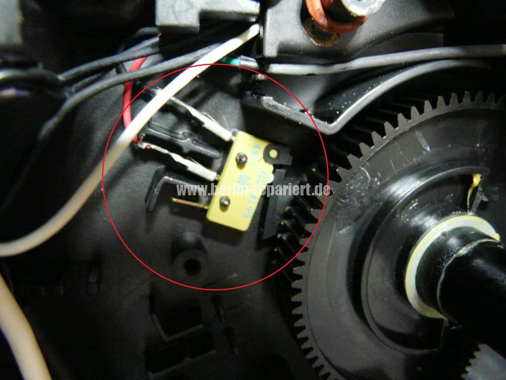 Micro Schalter Plage, Micro Switch Plague (4)