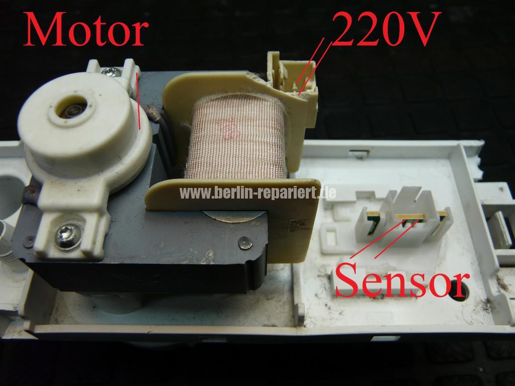 Siemens Bosch Kondenstrockner, Pumpe Defekt, P12-1-2518 (7)