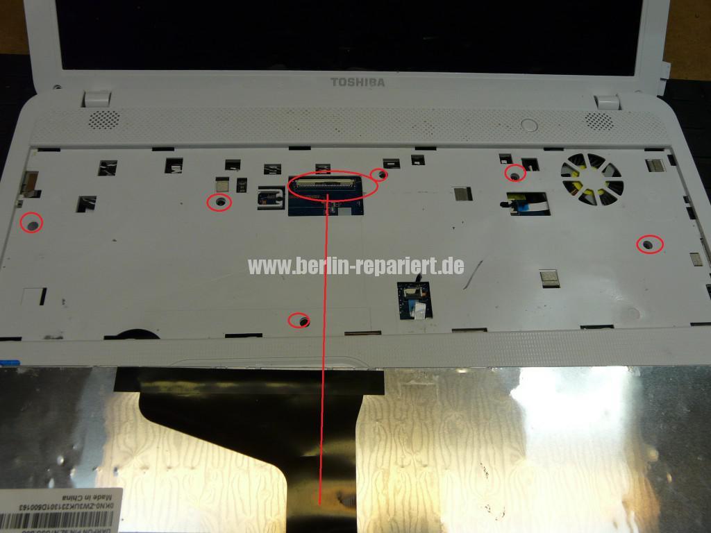 Toshiba Satellite C855, kein Bild, Scharniere, Display Deckel Defelt (5)