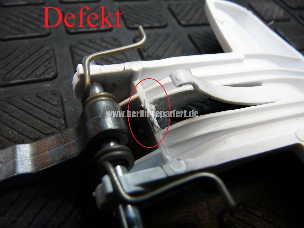 Bauknecht WAK 12, Handgriff Tür Defekt (3)