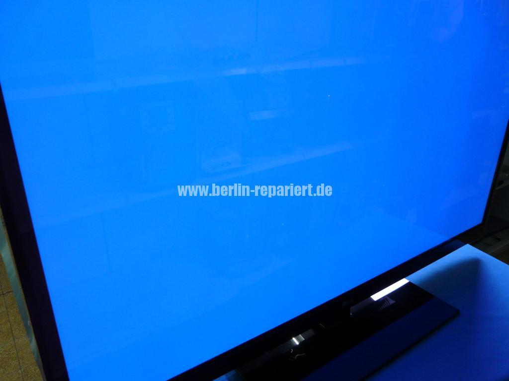 LG Plasma Reparatur (2)
