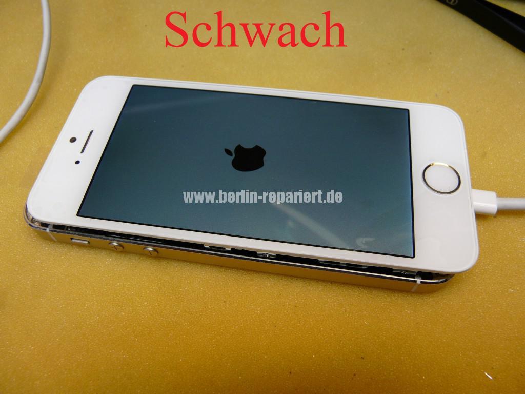 iPhone 5s Display Defekt (16)