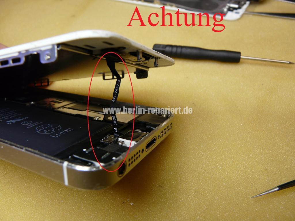 iPhone 5s Display Defekt (4)