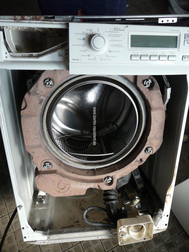 Elektrolux EWF16670, Gummimanschette Stark Verschmutz Verschimmelt (1)