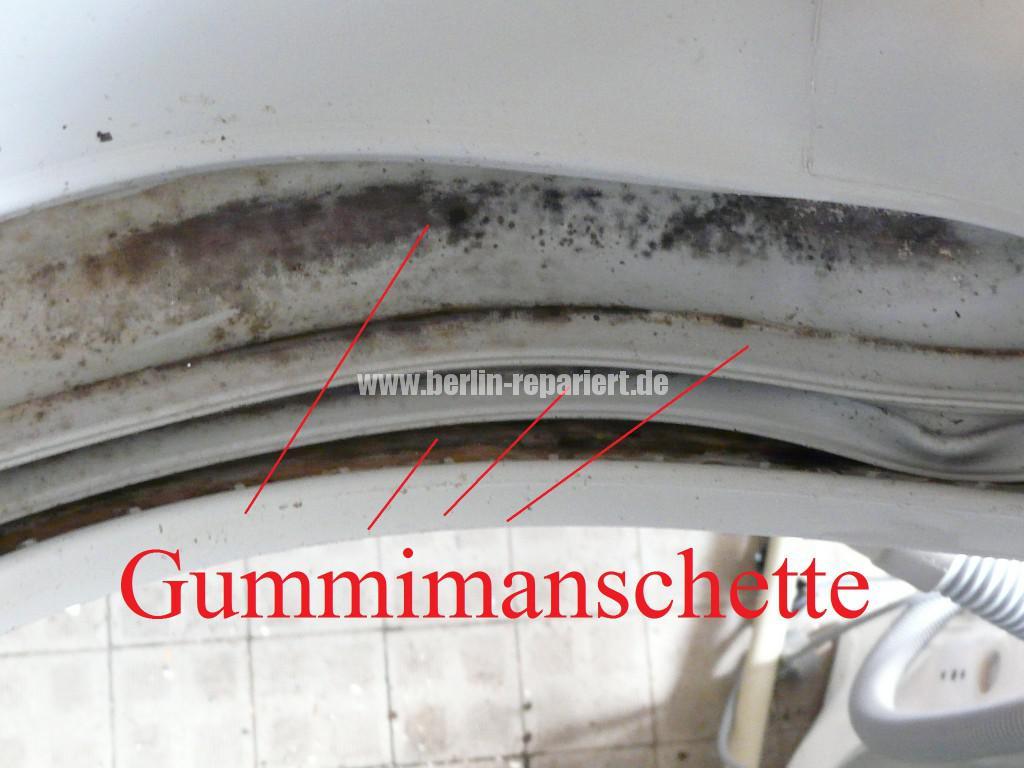 Elektrolux EWF16670, Gummimanschette Stark Verschmutz Verschimmelt (3)