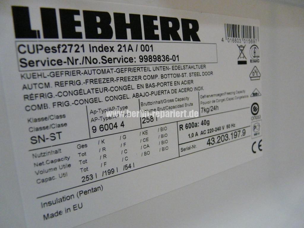 Liebherr CUP esf 2721, kühlt nicht (1)