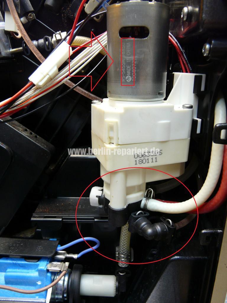 Melita Cafeo CI, verliert Wasser (3)