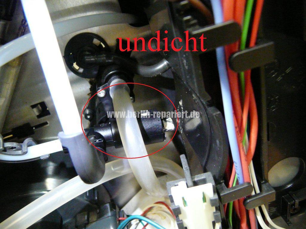 Bosch CTES32, verliert Wasser, Schalter setzt aus (11)
