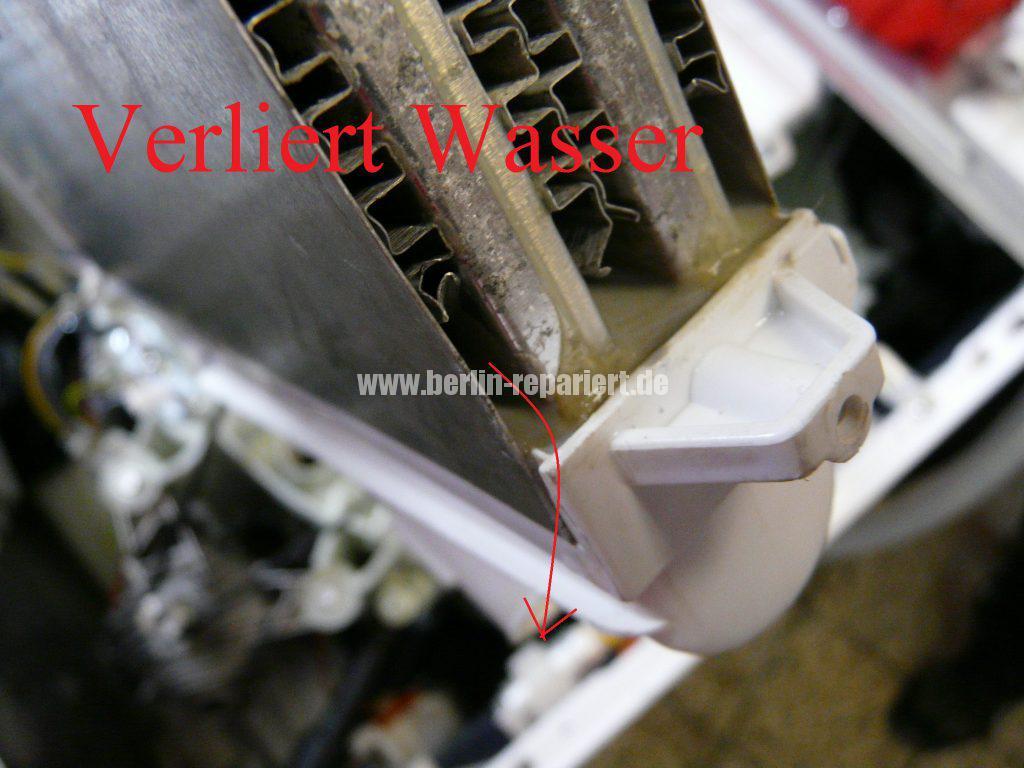 Bosch Logixx 7 WVH28540, verliert Wasser (12)