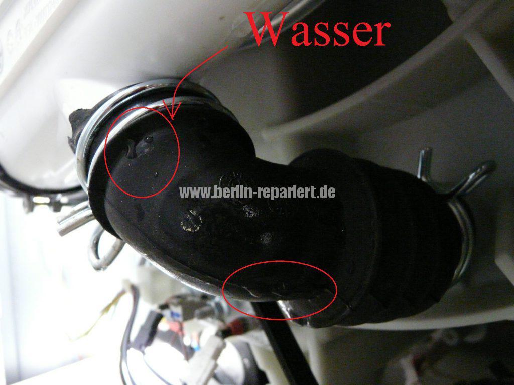 Bosch Logixx 7 WVH28540, verliert Wasser (2)