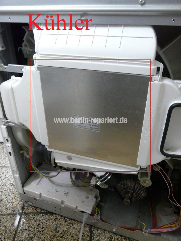 Bosch Logixx 7 WVH28540, verliert Wasser (8)