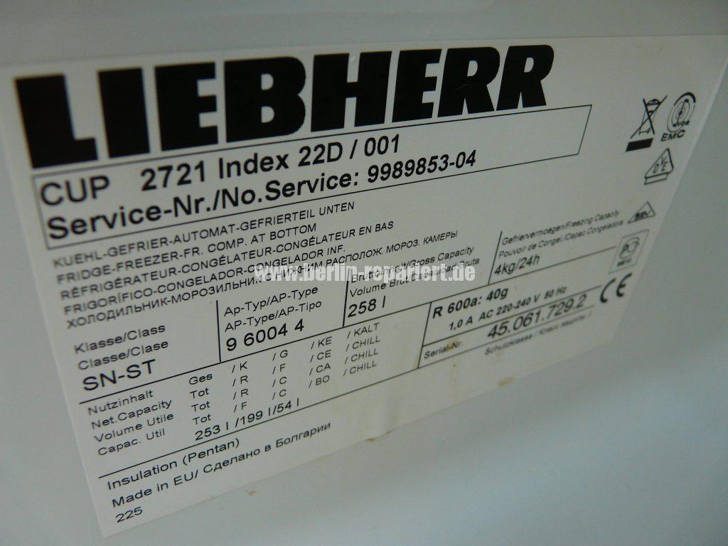 Liebherr CUP 2721, Magnettürdichtung defekt (3)