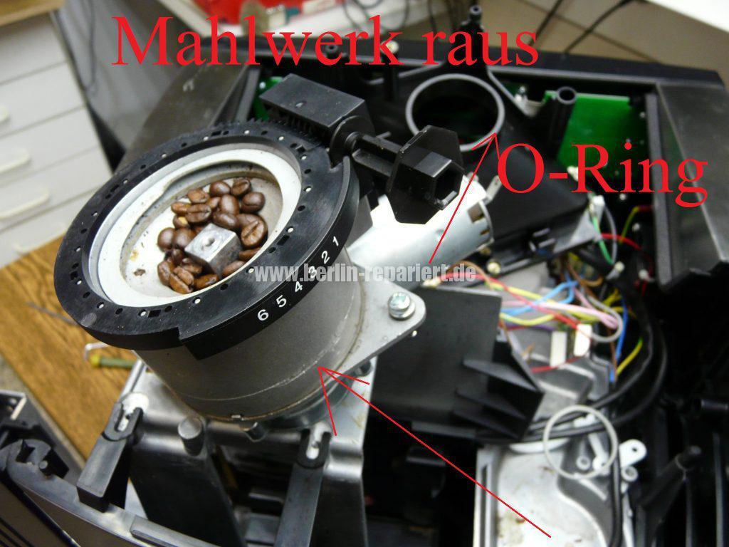 wmf-1000-mahlt-nicht-mahlwerk-revidieren-8
