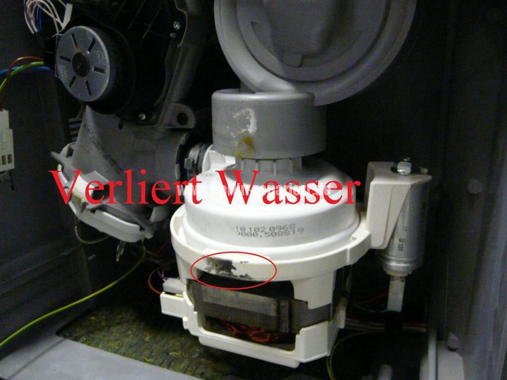 siemens-se64m364eu-verliert-wasser-2